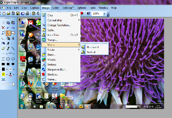 hypersnap screen shot