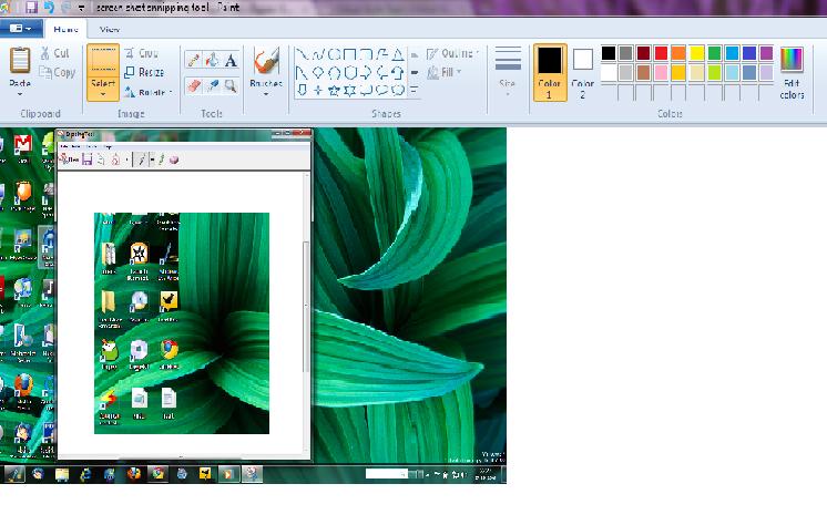 paint screen shot